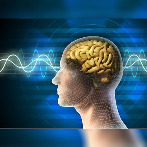 http://alldatmatterz.com/img/article/1205/brain.jpg