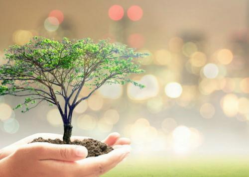 विश्व प्रकृति संरक्षण दिवस: विनाश से बचने के लिए है बहुत जरूरी, सिर्फ मनाने से नहीं चलेगा काम