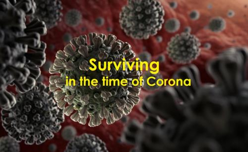 Coronavirus : Surviving in the time of Corona | Lockdown